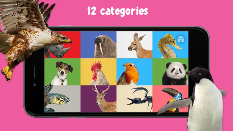 100 Animal Words for Babies & Toddlers screenshot-3