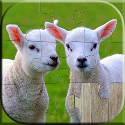 Cute Animals Puzzle - Relaxing photo picture jigsaw puzzles for kids and adults