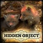 Hidden Object: Little Lovebugs icon
