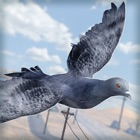 Bird Survival | Wing Sky Fly Tiny Simulator Game For Free icon