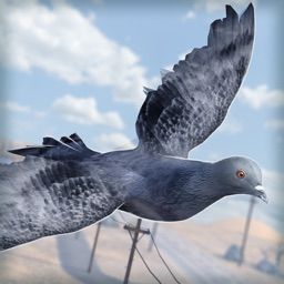 Bird Survival   Wing Sky Fly Tiny Simulator Game For Free