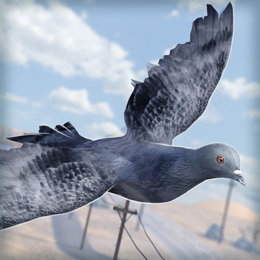Bird Survival | Wing Sky Fly Tiny Simulator Game For Free