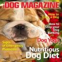 iDog Magazine – The Best new Dog, Puppy Training, advice and tips Magazine for Dog Owners