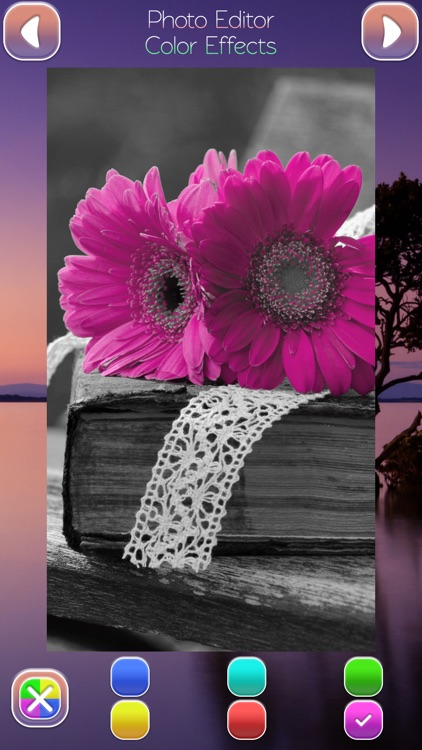 Photo Editor Color Effects - Select Details in Pic.s to Intensify Shine Luster or Gloss