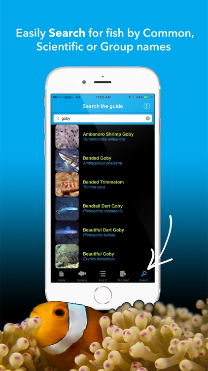 Coral Sea Fish Guide - fishes of the Great Barrier Reef, Papua New Guinea, Solomon Islands, Vanuatu, New Caledonia and beyond screenshot-3
