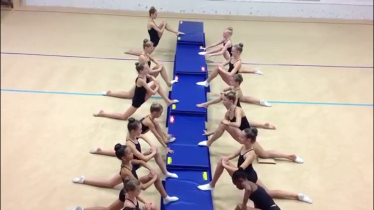 Gymnastics Master Class screenshot-2