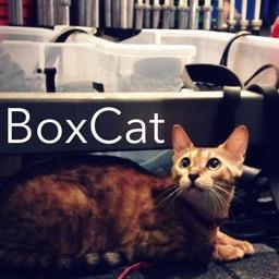 Box-Cat
