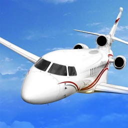 Speed Plane Driving Heavy Duty Cargo Luxury VIP Airliner Experience Game