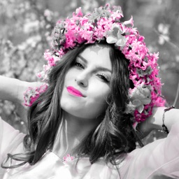 Color Effects for Pictures - Splash Paint or Colorize and Highlight Your Photo.s in a Snap