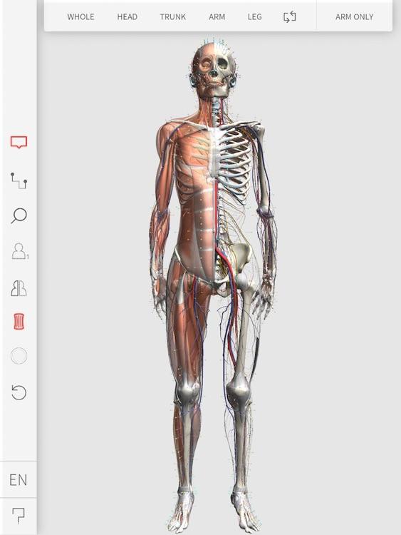 3D Acupoint screenshot-0