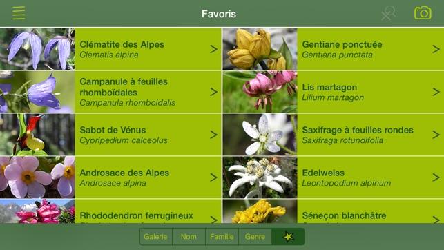 fleurs des alpes guide botanique flore alpine dans l app store. Black Bedroom Furniture Sets. Home Design Ideas