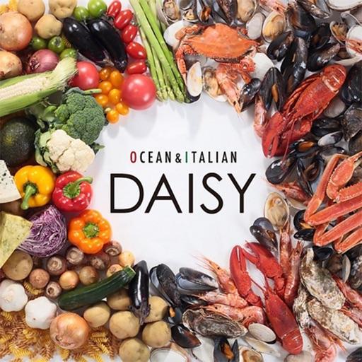OCEAN&ITALIAN DAISY(デイジー)