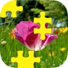 Daily Jigsaw Puzzle - A Threes-Puzzl Nature Activity Jigsaw Rules!