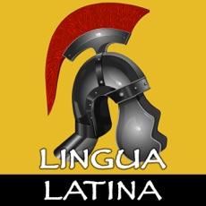 Activities of Lingua Latina: Verbs