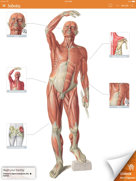 Sobotta Anatomy Atlas Free | App Price Drops