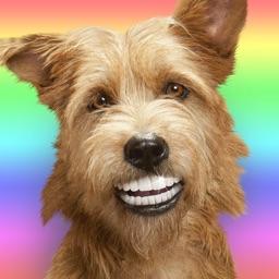 Dog Emojis