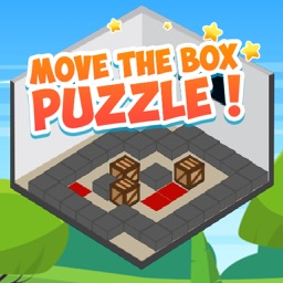 Move The Box Puzzle