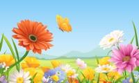 Magic Flowers TV