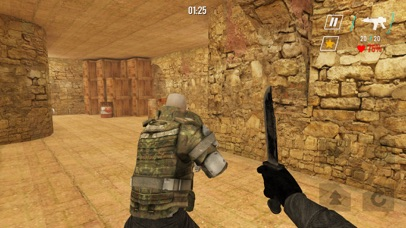 Counter SWAT Forces screenshot 5