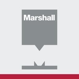 Marshall Cosmetic Repair