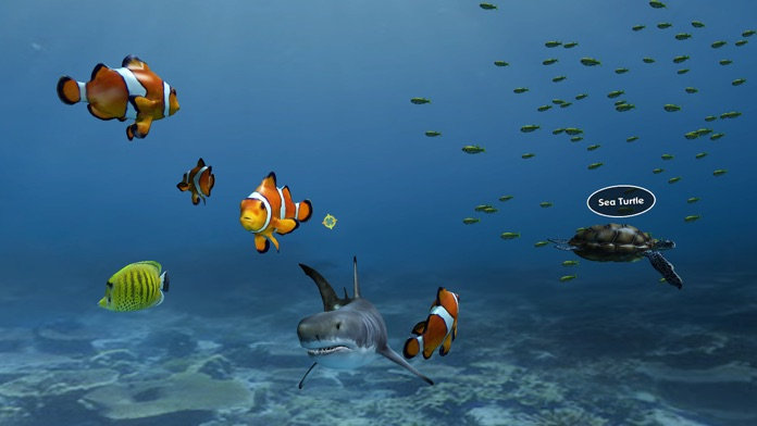 Aquarium VR Screenshot