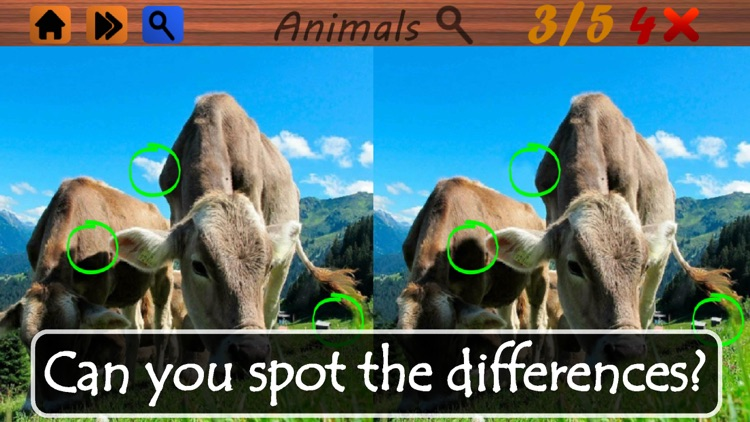 Spot the Differences - Animals