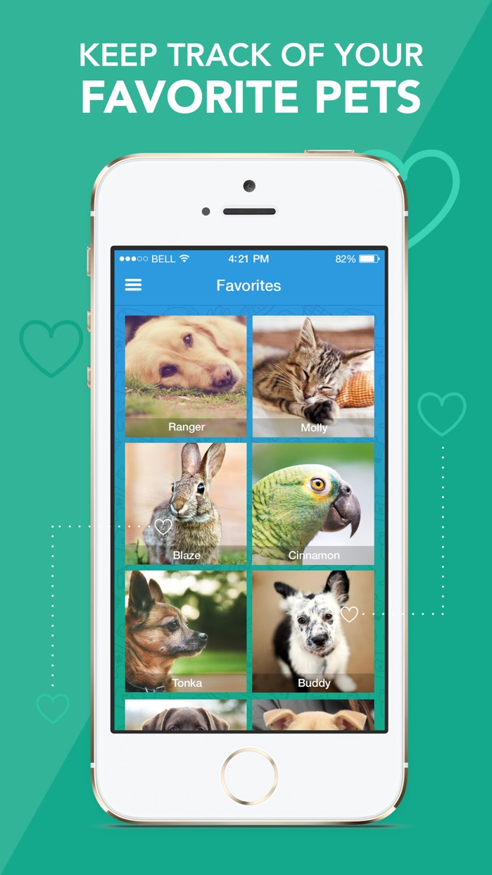 AllPaws - Find a Dog, Cat or Pet to Adopt Near You Screenshot