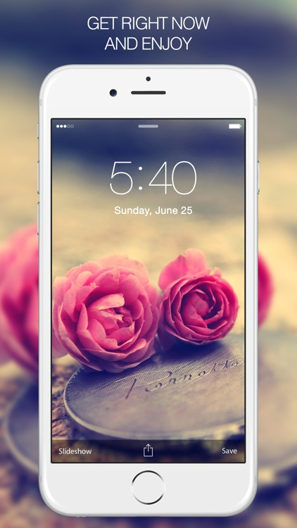 Rose Wallpapers & Backgrounds – Pictures of Roses screenshot-4
