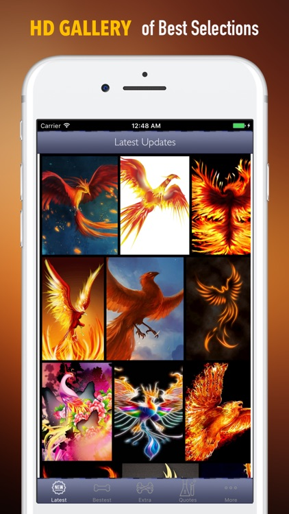Phoenix Bird Wallpapers HD: Quotes and Pictures