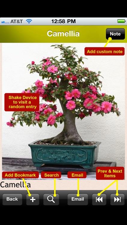 Bonsai Encyclopedia screenshot-4