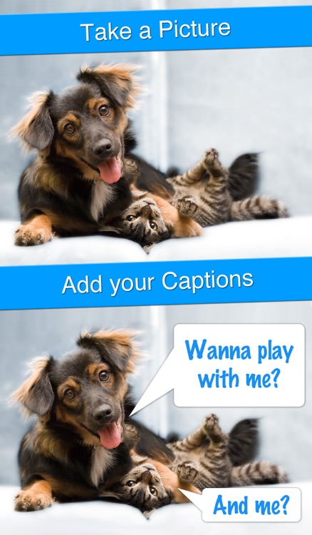 Perfect Captions