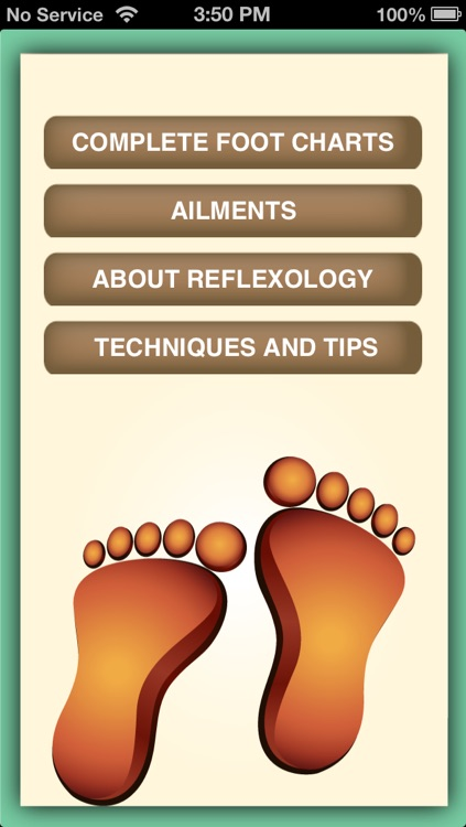 iPocket Foot Reflexology