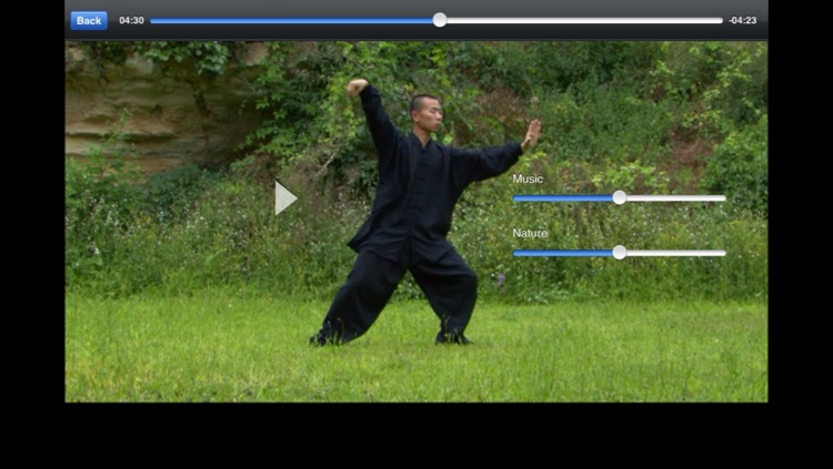 Tai Chi Yang screenshot-0