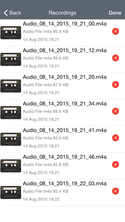 Voice Manager Pro: Professional Audio Recording & Sharing screenshot-3