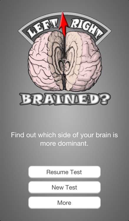 Brain Test ~ I'm Left or Right brained? ~ A brain side hemisphere dominance quiz screenshot-3