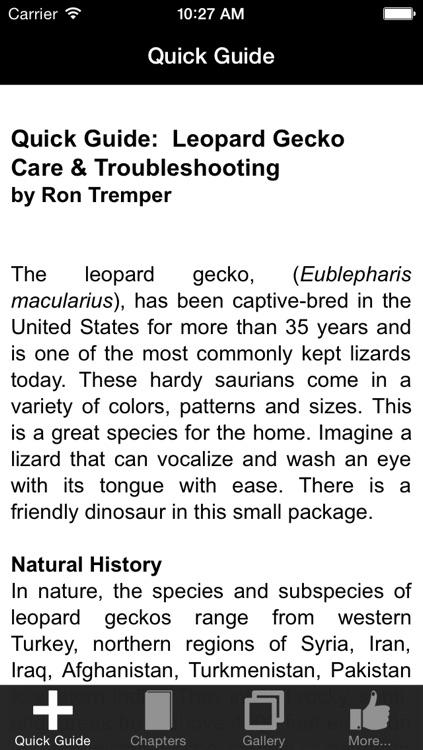 Leopard Gecko Care 101