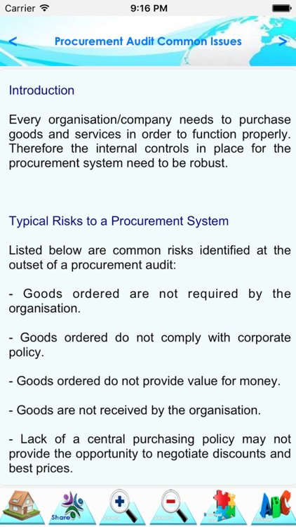 Audit of Accounts Payable & Procurement Process screenshot-3
