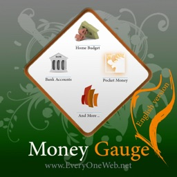 MoneyGauge