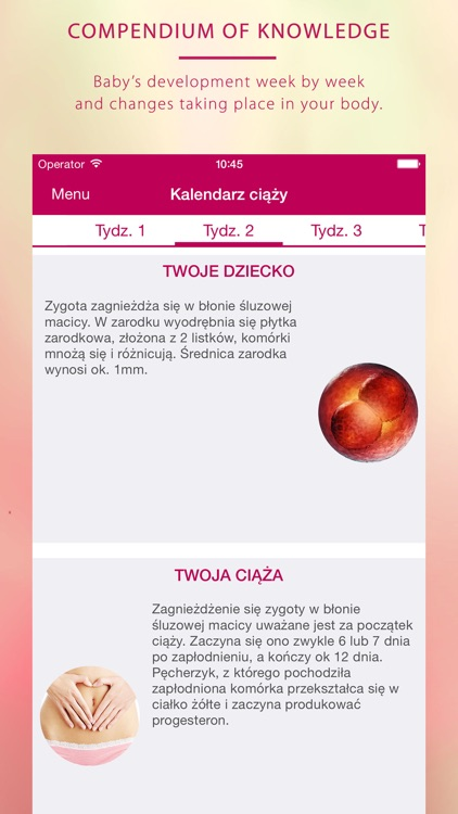 My pregnancy - Moja ciąża screenshot-4
