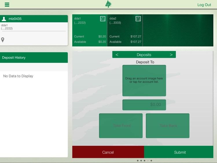 CedarStone Bank App for iPad screenshot-3