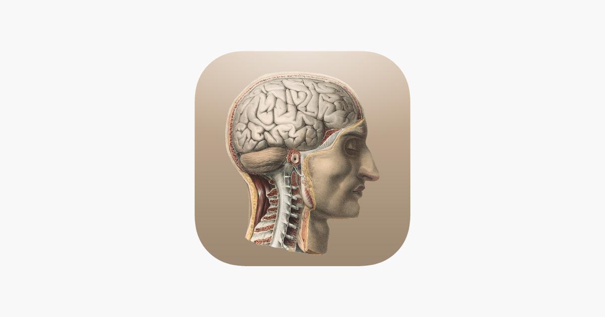 Anatomía Clásica en App Store
