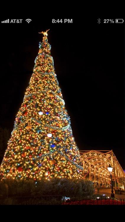 WDW Holiday Pics - Walt Disney World Wallpapers