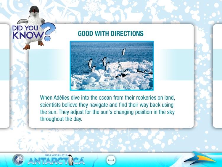 SeaWorld's Antarctica for iPad screenshot-3