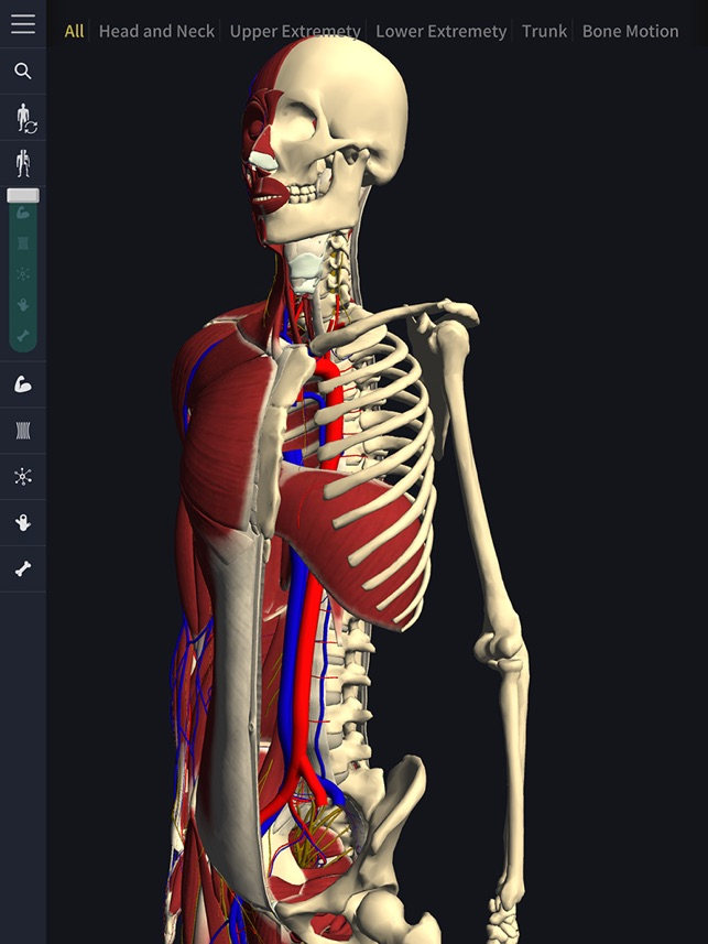 Teamlabbody 3d Motion Human Anatomy On The App Store