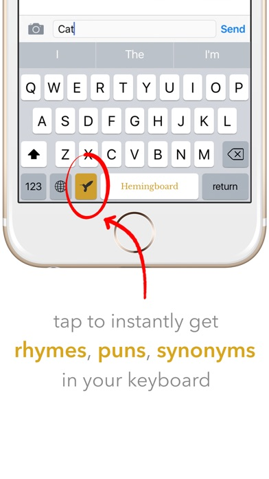 Hemingboard: Synonyms,Rhymes,Puns in Your Keyboard Screenshots