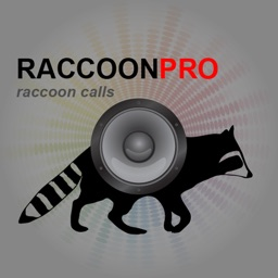 REAL Raccoon Calls and Raccoon Sounds for Raccoon Hunting