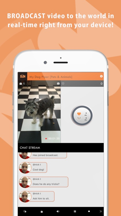 MAGNIFY - Live Video Streaming