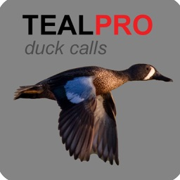 Duck Calls for Teal - TealPro - Duck Hunting Calls