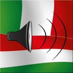 Magyar / Olasz kifejezéstár - Italian / Hungarian phrasebook - Multiphrasebook