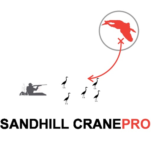 Sandhill Crane Hunting Planner for Waterfowl Hunting